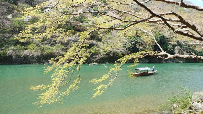 Water Nature High Angle View Day Nautical Vessel Lake No People Beauty In Nature Outdoors Plant Tree Scenics Japan Osaka,Japan Travel Kyoto, Japan Arashiyama