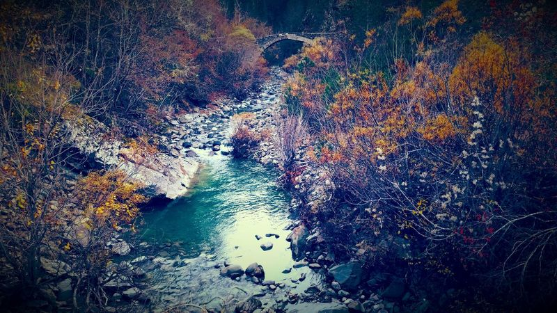Zagoroxoria,greece Tree Nature Ponte Zagori Tranquility Vovousa No People Outdoors Beauty In Nature Water river bridge