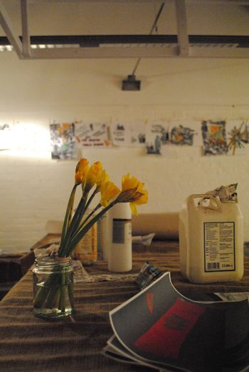 Daffodils Daffodil Women Empowerment Art Exhibition Indoors  Flower No People Flowering Plant Plant Wall - Building Feature Architecture Decoration Still Life Home Interior Flower Arrangement Old Wall Container Vase Table Communication The Still Life Photographer - 2018 EyeEm Awards