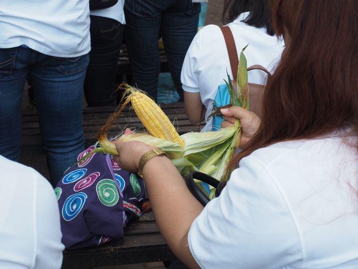 Corn husk peeling by woman hands Peeling Off Husk EyeEm Selects Women Real People Adult Group Of People People