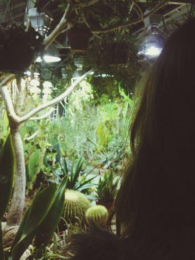 Beautiful plant friends ? Cacti Greenhouse Adventures