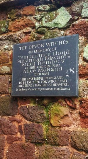 """A memorial plaque to the Bideford witches hangs on the ruined wall of Rougement Castle, Exeter, Devon, SW England, UK - These were reputedly the last people to be tried and executed for witchcraft in England - In well documented cases, three women, namely Temperance Lloyd, Susannah Edwards and Mary Trembles, were tried at Rougemont, found to be guilty of witchcraft and were taken to Heavitree and hanged in August 1682 - A fourth woman, Alice Molland, although less well documented, was similarly executed in 1685 - Aside from one confession by Lloyd, which she did not recant even with execution imminent, it is generally considered in current thinking that they were found guilty mostly based on hearsay - The plaque ends poignantly """"In the hope of an end to persecution and intolerance"""" Devon Memorial Rougemont Witchcraft  Architecture Board Close-up Hanged Information Information Sign Injustice Intolerance Message Outdoors Persecution Plaque Remembrance Script Sign Stone Stone Wall Text Wall Western Script Witches"""