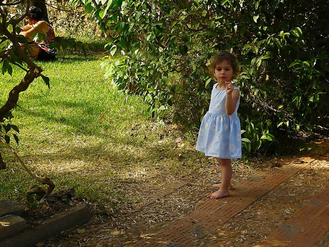 Full Length Childhood Innocence One Person Blond Hair Standing Tree People Outdoors Nature Day Nikonphotography Capture People Watching The Week Of Eyeem Streetphotography Portrait Photography Scenics Nature Capture The Moment Tranquil Scene Kidsphotography Kid Colorful Photooftheday