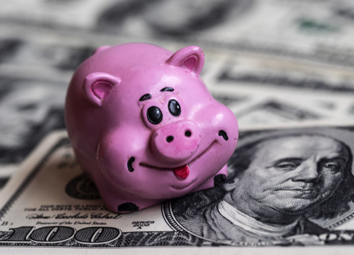 Ceramic pig on background of dollar bills, savings and investments concept Ceramic Pig Background Dollar Bills Savings Investments Concept Finance Investment Currency Wealth Business Piggy Bank Representation Paper Currency Coin Bank Banking No People Economy Making Money Pink Color Close-up Indoors  Human Representation Bank Account