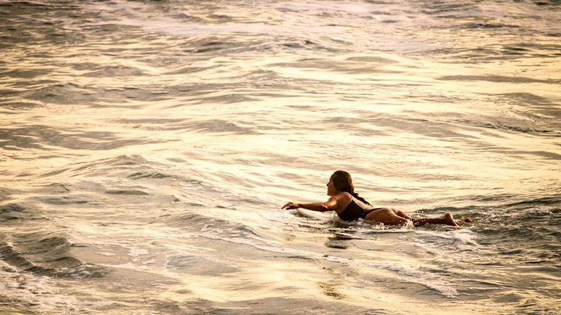 Surfing the Golden waves Golden Hour Golden Moment Gold Colored Gold Water Water Swimming Sunset Beauty Rippled Waterfront Horizon Over Water Sandy Beach Swimming Pool Calm Swimming Lane Marker Infinity Pool Mid Distance Swan Surf Sand Wave Shore Rushing Ocean Stilt Summer Sports