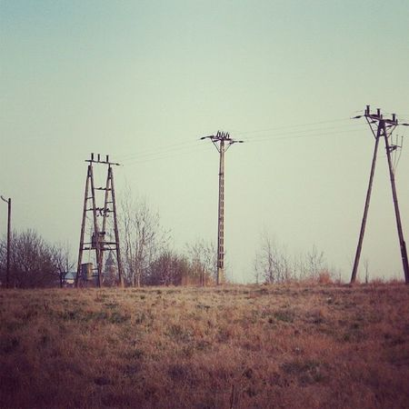 Lancut Podkarpacie Poland Pologne summerfieldnaturelandscapeeurope