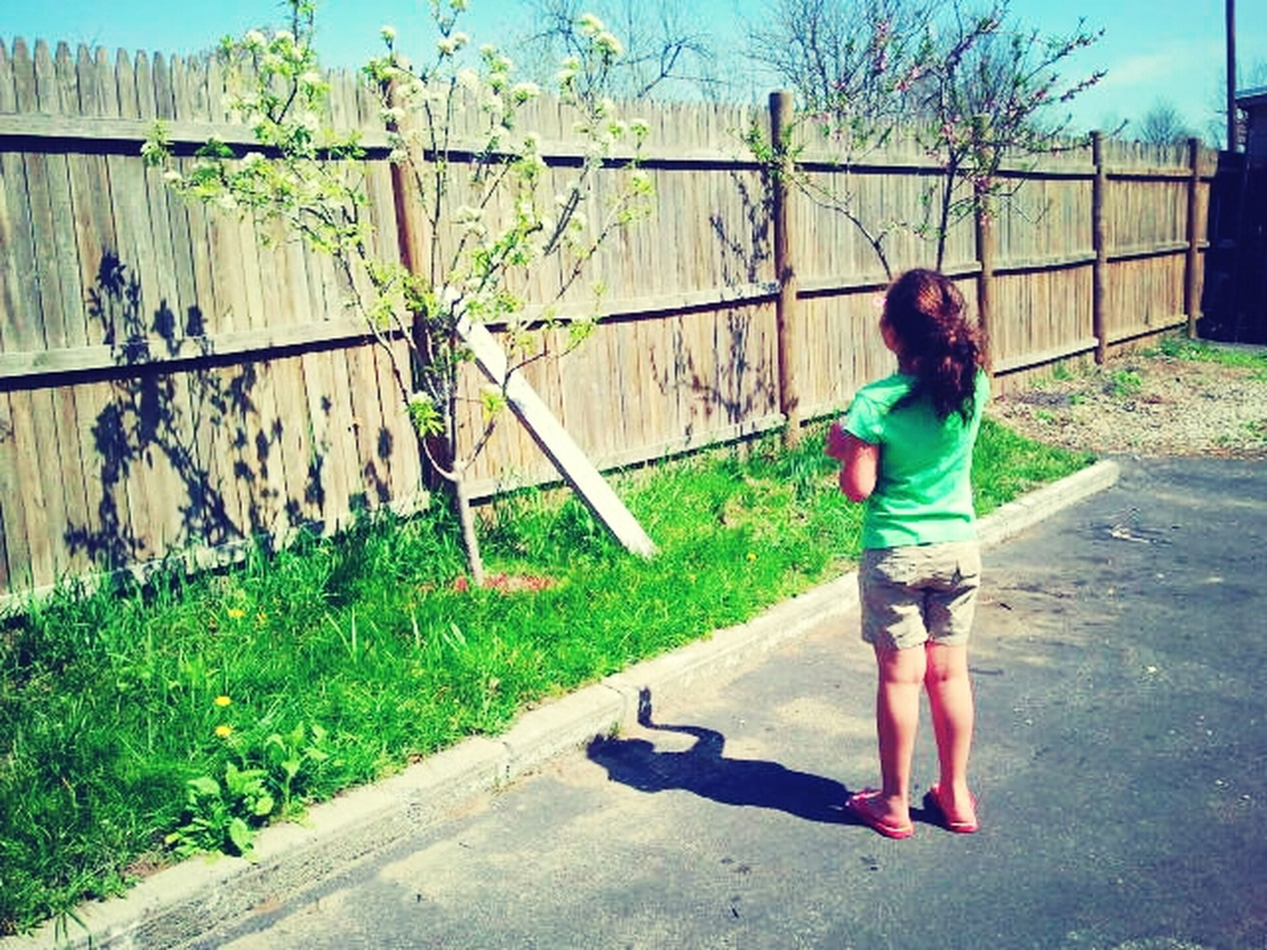 childhood, full length, elementary age, lifestyles, casual clothing, boys, person, leisure activity, girls, innocence, fence, sunlight, standing, day, playground, playing, playful, built structure