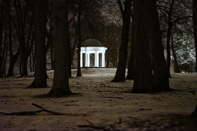 Pavilion at Hafslund Hovedgård by night.. Pavilion EyeEm Gallery King EyeEm Best Shots Winter Norway Tranquil Scene Nightphotography Tree Shadow Sunlight Architecture Historic History Historic Building Snow Cold Castle The Great Outdoors - 2018 EyeEm Awards