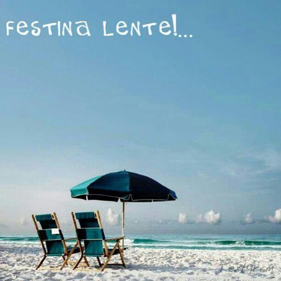Festina Lente Quote Ceasar motto latin