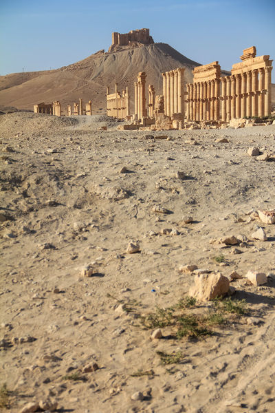 The ruins of the ancient city Palmyra, Syria ASIA Ancient Archeology Castle Cityscape Colonnade Desert East Empire Palmira  Arabic Building Civilization Columns Culture Hill History Monument Old Oriental Palmyra Roman Ruined Temple Unesco