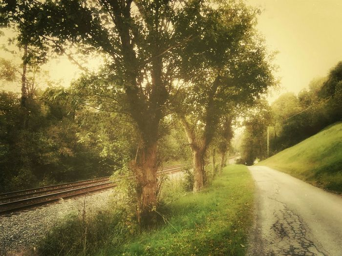 By The Tracks Railroad Walking Road Beauty Time To Reflect Beautiful World Nature Peace Autumn