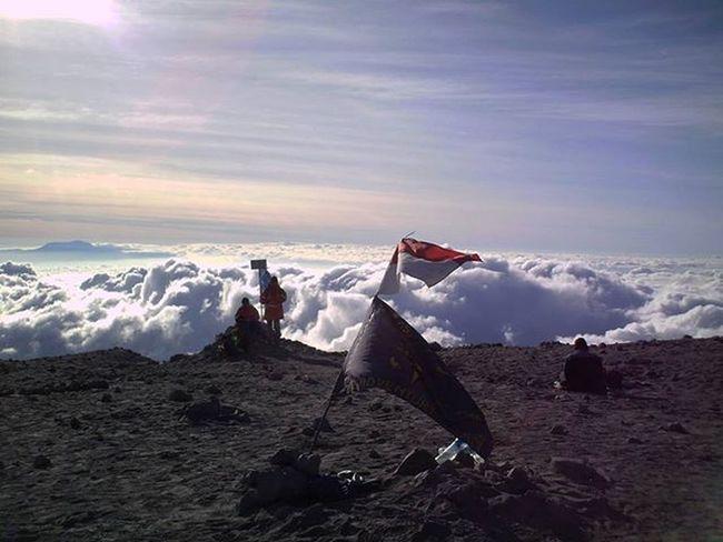 Diatas awan... . . Menjelang siang di puncak Mahameru Gunungsemeru jawa timur. . . . Gunungindonesia Pendakiindonesia Exploregunung Mountainesia Instagunung Pendakikeren Pendakicantik Pendakikusam Instagood Adventure Travel Mountains Pendakimerahputih