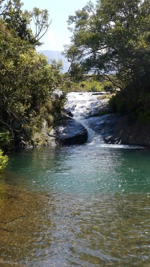 Cold Water Hiking Malawi Mulanje Africa African Beauty Beauty In Nature Day Forest Malawian Mountain Nature No People Outdoors River Scenics Sky Tranquil Scene Tranquility Tree Water Waterfall
