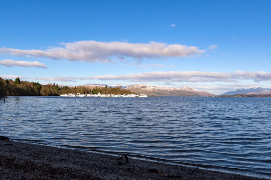 Scotland Transportation Animal Themes Animals In The Wild Beauty In Nature Bird Boats Cloud - Sky Cold Temperature Day Lake Loch Lomond Mammal Mountain Nature No People Outdoors Pleasure Craft Scenics Sky Tranquil Scene Tranquility Vessel Water Winter
