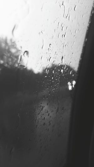Need For Speed Taking Photos Samsungphotography Capture The Moment Rainy Rainy Day Raining View From The Window... Wet Glass Of Window :) Weather Photography Samsung Galaxy S6 Edge Wet Glass Wet Out Side Wet Day Waterdropsphotography Waterdroplets Black And White Photography Black And White B&w Nature B&W Portrait B&w Photo