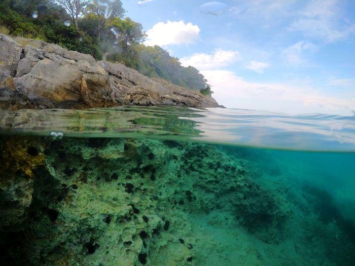 Water Tree Sea Beach Mountain Blue Rock - Object Tropical Climate Seascape Reef Coral Coastline Underwater Sea Life Snorkeling Island