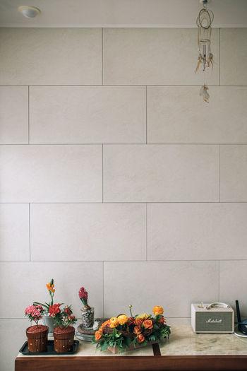House Ordinary Day Snap Sony A7R Kerlee Flower