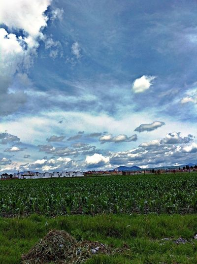 Skyporn Clouds And Sky Blue Sky Green
