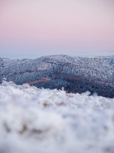 Scenic winter landscape with snow covered mountains and trees at sunset.