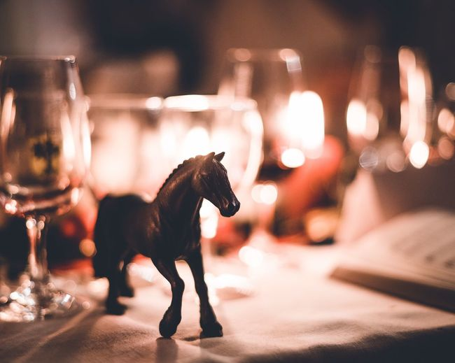 Stallion Stallion Horse Fantasy Miniature Table Candle Light Proud Strenght Animal Indoors  Pets Mammal Domestic Animals Animal Themes Close-up Night No People