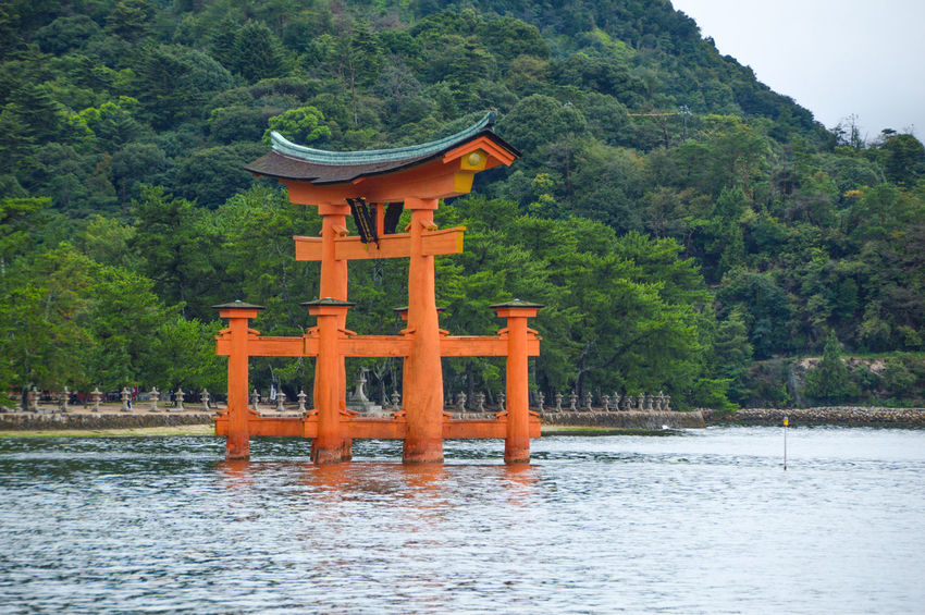 Tori Of The Itsukushima Shrine At Miyajima Island Japan Gate Itsukushima Shrine Japan Japanese  Shinto Shrine Shrine Beauty In Nature Island Itsukushima Religion Shinto Shintoism Tori