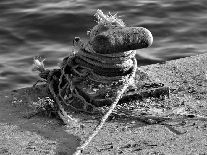 Pier Rope Rust Secured Tied Knot Cable Cables Close-up Day Docks Mooring Mooring Post Mooring Rope Moorings  Nature No People Outdoors Riverfront Ropes Rusted Rusted Metal  Sisal Tied Water Waterfront Black And White Friday