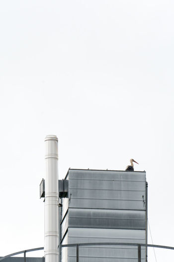 Low angle view of stork perching on metallic building against clear sky