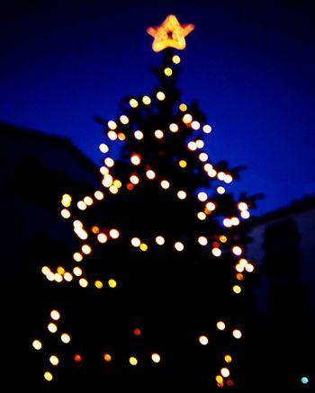 Christmas Tree Christmas Navidad Nadal Barcelona Arenys De Mar