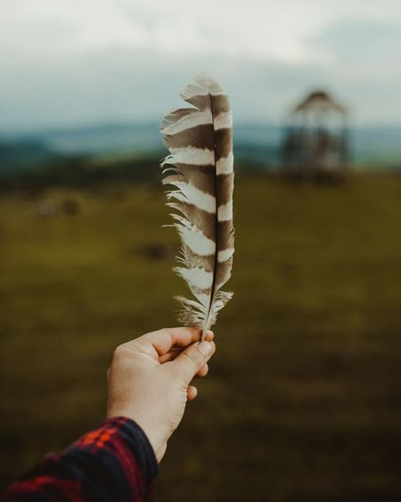 Human Hand Nature Photography Transylvania Feather  Summer Lifestyle Lifestyle Photography Travel Travel Photography Live For The Story The Great Outdoors - 2017 EyeEm Awards EyeEmNewHere