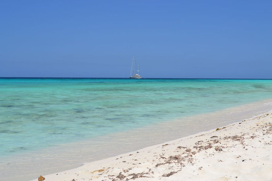 Beach Beauty In Nature Blue Boat Cayo De Agua Clear Sky Coastline Day Horizon Over Water Los Roques Nature No People Ocean Outdoors Peace Peace And Quiet Sailboat Sand Sand & Sea Sea Seascape Shore Tranquil Scene Venezuela Water
