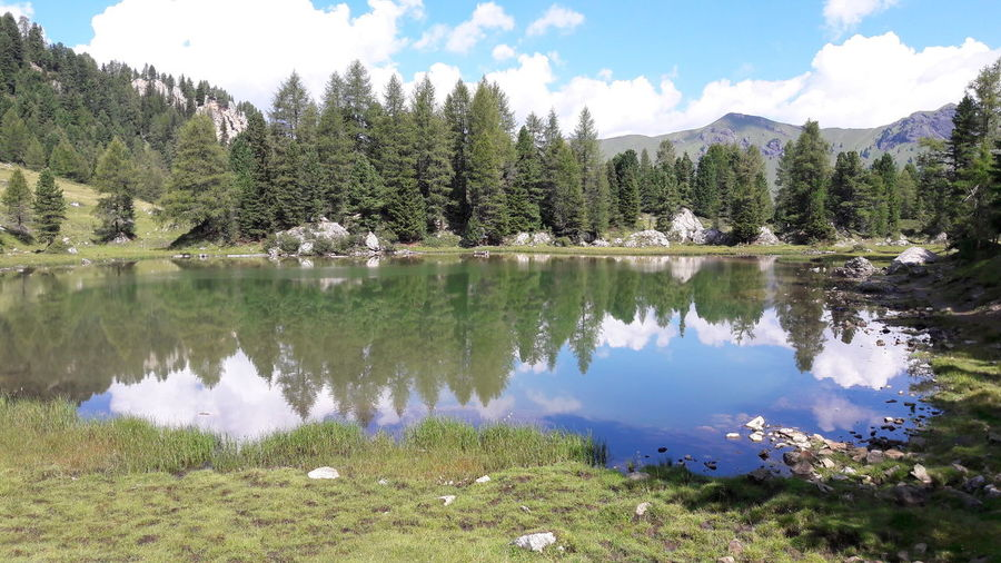 Lagusel Dolomites Val San Nicolò Tree Water Mountain Lake Pine Tree Reflection Pinaceae Sky Landscape Cloud - Sky Reflection Lake Pine Woodland Evergreen Tree Physical Geography Rocky Mountains Reflecting Pool Standing Water Geology Wildflower