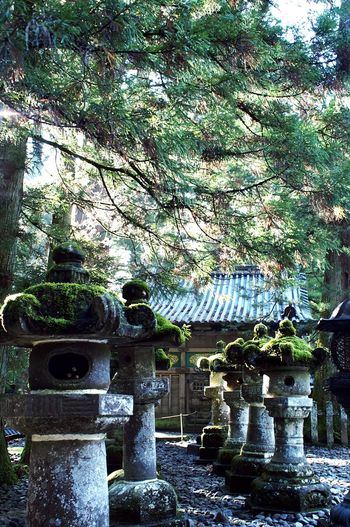 Nikko 日光 東照宮 神社 Temple Temples Japan EyeEm Gallery EyeEm Japan Photography