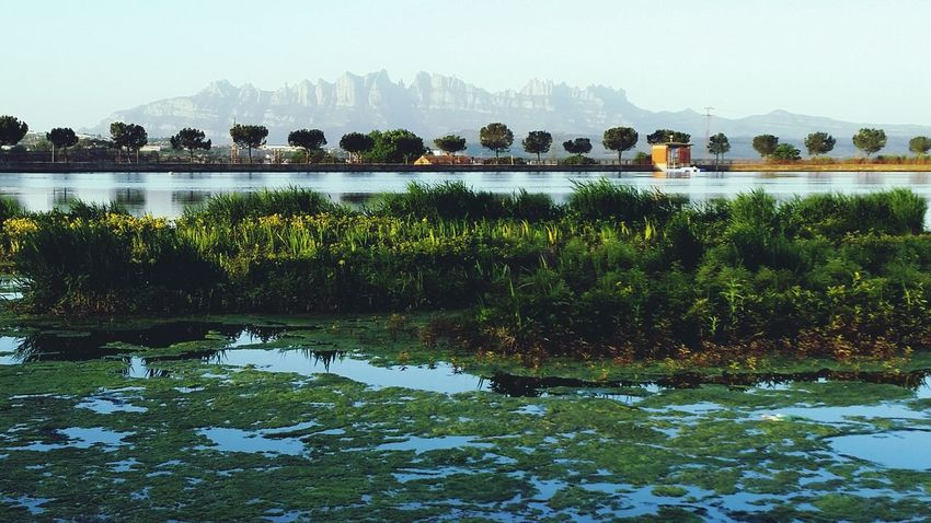 Landscape_Collection Montserrat Nature_collection Parc De L'Agulla