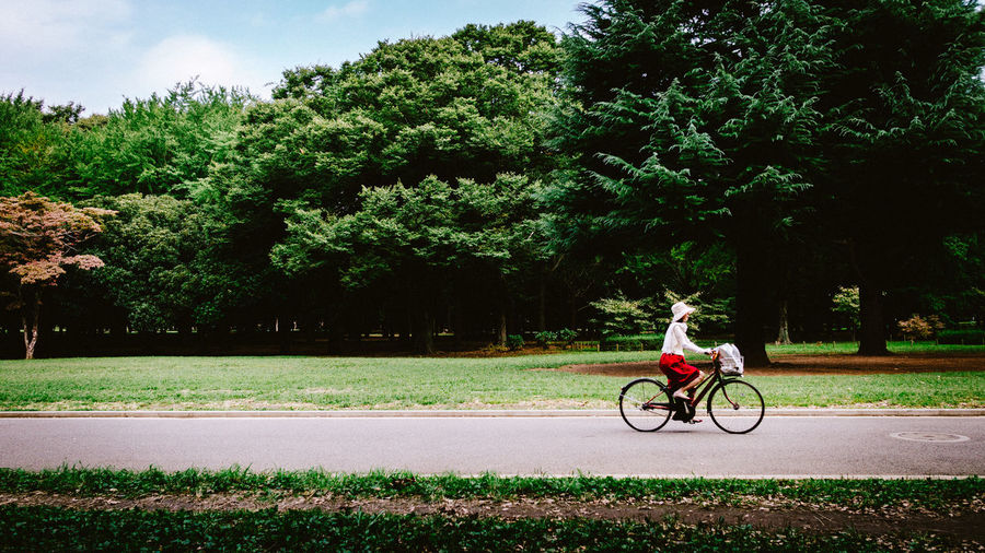 Man riding bicycle on road against trees
