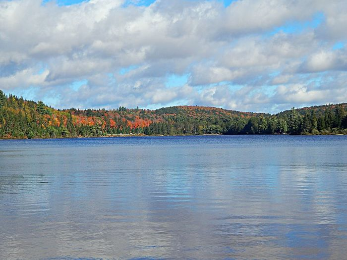 Beauty In Nature Multi Colored Cloud - Sky Lake No People Scenics Tranquility Sky Landscape Outdoors Day Water Nature Algonquinprovincialpark Beauty In Nature Reflection