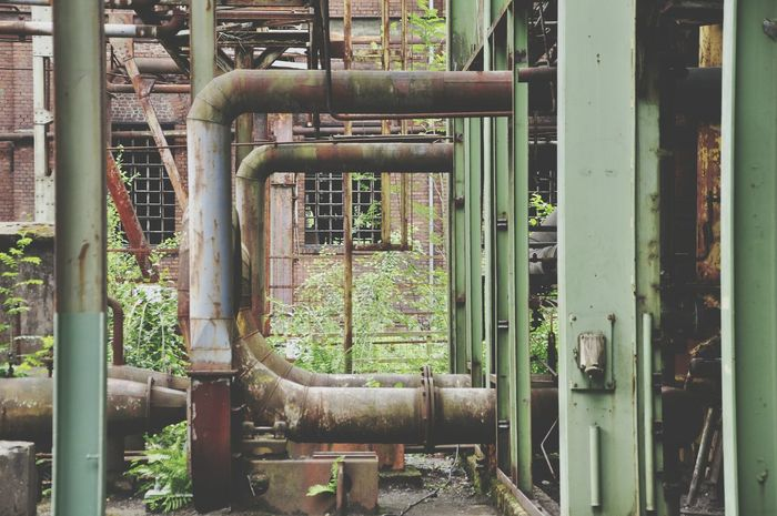 Ducts Industrial Landscapes Shadesofgreen Brown Nature Landschaftspark Duisburg-nord Pipes Abandonment