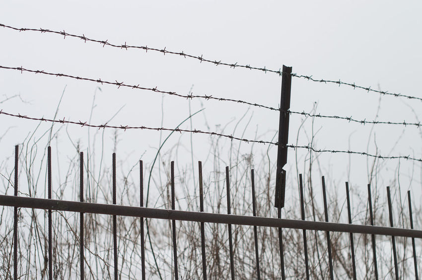 Barbed wire fence Barbed Wire Barricade Boundary Danger Day Exclusion Fence Forbidden Metal No People Outdoors Prison Prison Bars Prisoner Protection Razor Wire Safety Security Security System Separation Sharp Sky Spiked Trapped Wire EyeEmNewHere Minimalist Architecture Resist The Graphic City