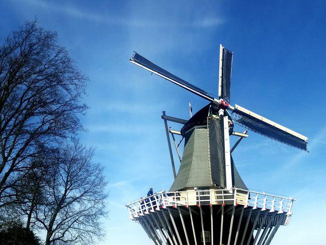 Kaukenhof Amazing Amazing View Amazing_captures Hanging Out Traveling Travel Holand Netherlands ❤ Hello World