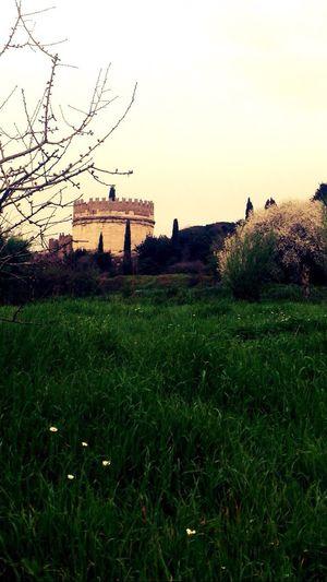 Villa Di Massenzio Roma Rome Ruins