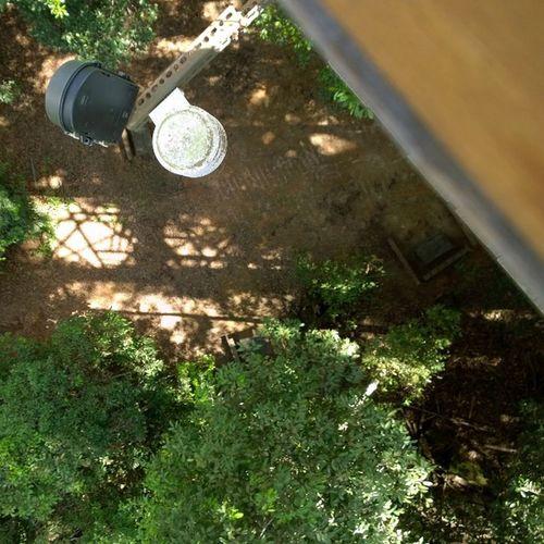 Bukitbengkirai Latepost Balikpapan Treescanopy