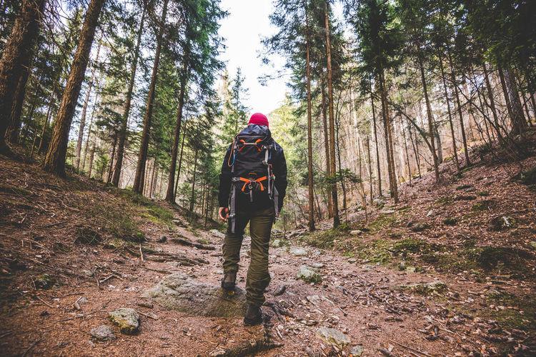 hiker walking