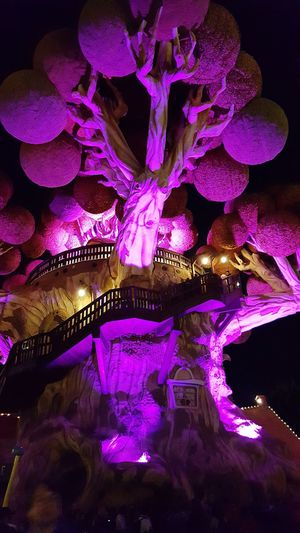 GARDALAND!!ITALY ❤❤Pink Color Illuminated Night Beauty No People Close-up Sequin Outdoors Nature_perfection Follow4follow Bestoftheday Day Clock Gardaland Gardalandpark Tourism Parcodivertimenti Park