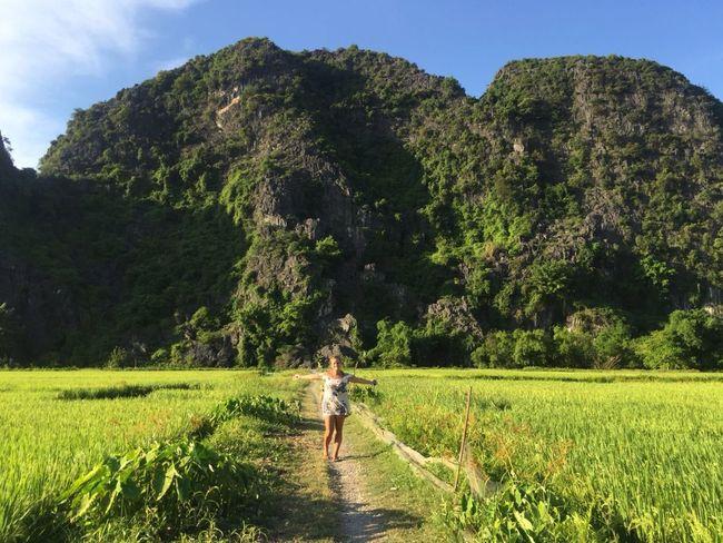 Happygreen GreenGreenGreen Ninh Binh, Vietnam Happy Nature Plant Real People Growth Tree Green Color Field Land Landscape Beauty In Nature