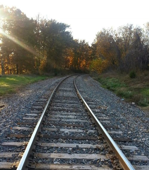 Vanishing Point Railroad Tracks Autumn Colors Railroadphotography