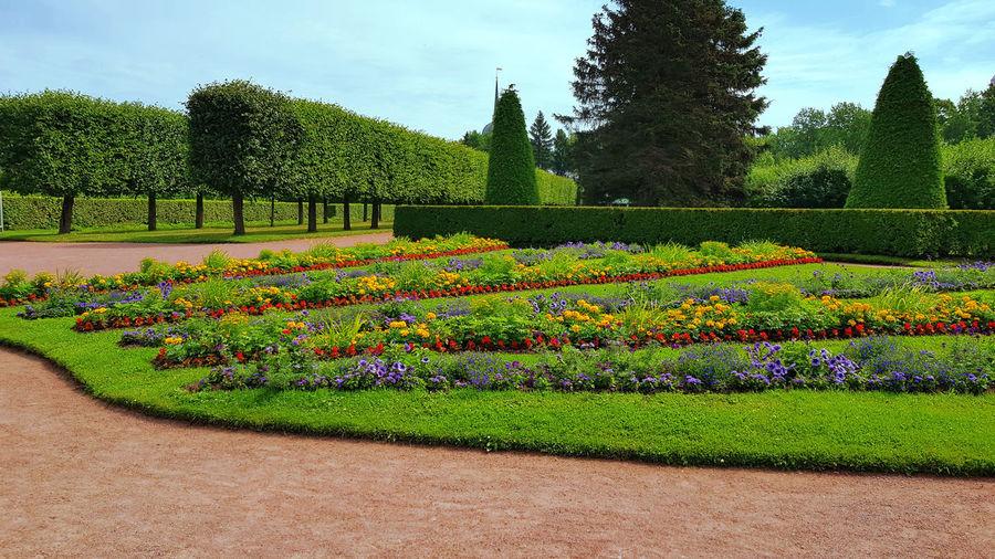 Scenic view of garden in park against sky