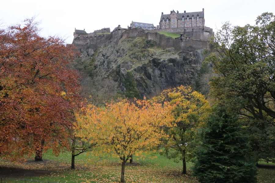 castle on the hill EyeEmNewHere Stories From The City City Edinburgh Edinburgh Castle Scotland United Kingdom Autumn Castle Tree Castle History Architecture Sky Building Exterior Fort Medieval Fortified Wall Ancient Civilization Fortress Ancient Fall Canon Destinations Past Archaeology