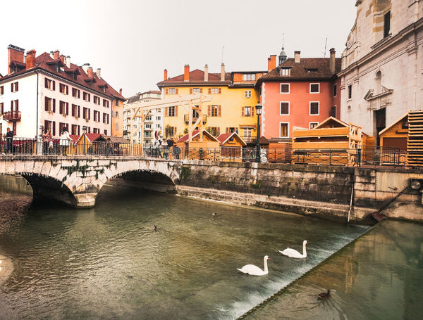 Loving Exploring, loving knowing myself and being inspired ✨ Cityscape Village Village View Village Photography Annecy, France Annecy Le Vieux FrenchCity City Cityscape Water Old Town Sky Architecture Building Exterior Built Structure Townhouse Arch Bridge Arch River Bridge - Man Made Structure TOWNSCAPE Residential Structure Bridge Riverbank