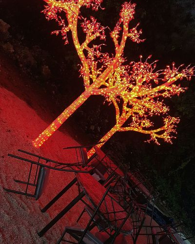 Red Night Dine Out Christmas Light In Park Tables And Chairs LEDLights LED Tree