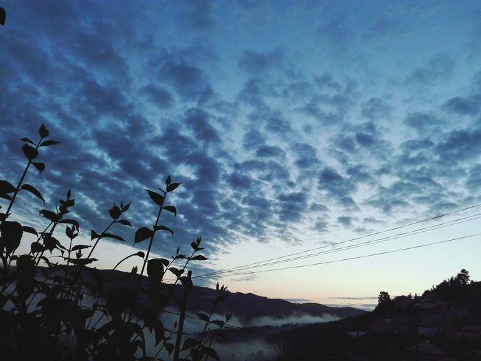 Nature 5am First Eyeem Photo