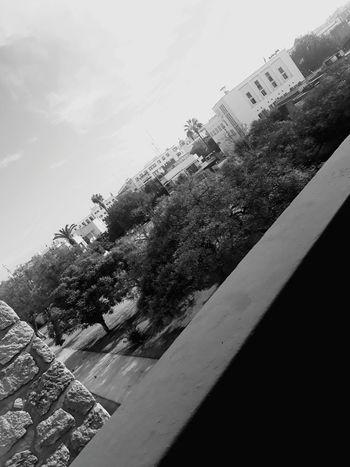 Black And White Friday Rabat Morroco❤ Shcool Days 📚 Morocco 🇲🇦